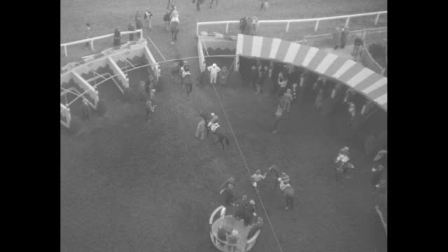 pan up from horses in paddock stalls to crowd in threetiered stands at golden gate fields / various shots horses being led out of stalls / looking... - starting gate stock videos and b-roll footage