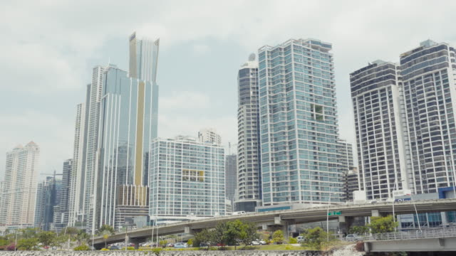 Panama city establishing shot. We can see palm trees and tall skycrappers.