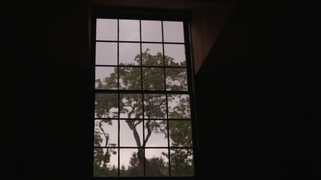 panes of glass in a sash window distort the view of a tree on a windy and overcast day, eastern usa. - window frame stock videos and b-roll footage