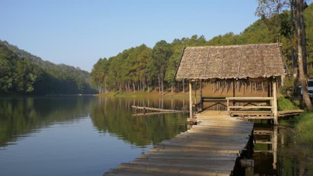 vídeos de stock e filmes b-roll de pereira ung florestais plantações, tailândia - casa de jardim