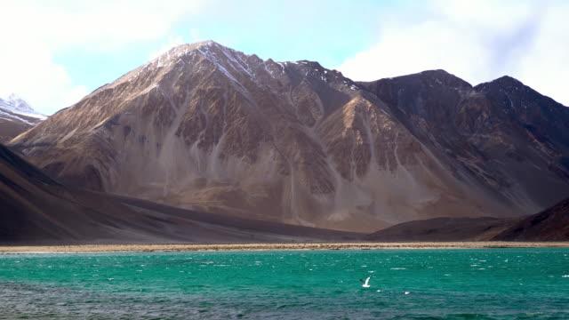 pangong tso lake with himalayan mountians background, leh ladakh jammu and kashmir india - lake stock videos & royalty-free footage