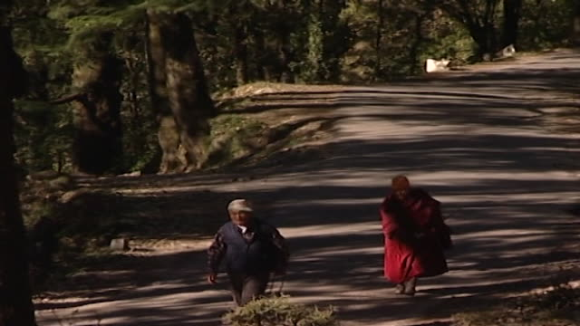 vídeos de stock e filmes b-roll de pan-left with elderly tibetan refugees walking along the path to mcleod ganj: the headquarters of the tibetan government-in-exile; where thousands of... - pinaceae