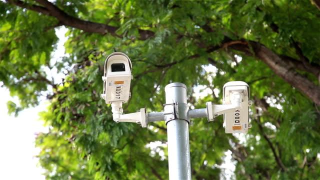 HD panning: CCTV on pole under tree.