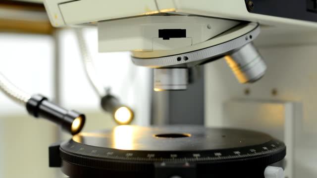 vídeos y material grabado en eventos de stock de toma panorámica :  acercamiento al portaobjetos de microscopio de luz naranja - microscopio