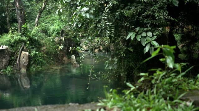 panning: decorated garden among blue stream