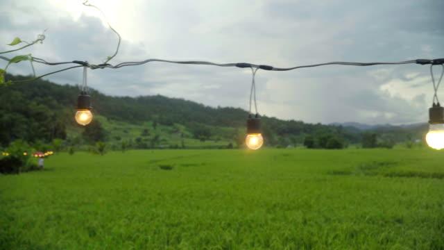 schwenken: licht im garten reis nach rainging dekoriert - elektrische lampe stock-videos und b-roll-filmmaterial