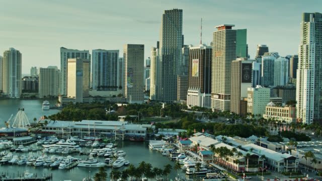 panning drone shot of marina, bayfront park and downtown miami - biscayne bay stock videos & royalty-free footage