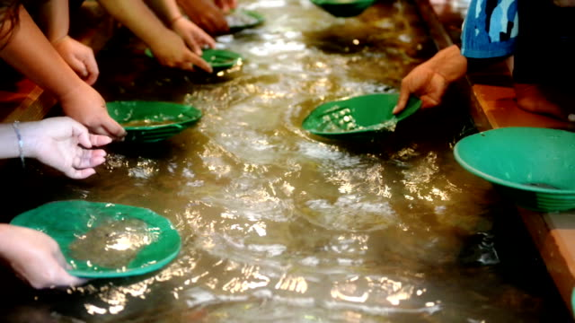 panning for gold - panning stock videos & royalty-free footage