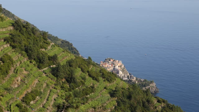 Panning from left to right of beautiful green vineyards to a picturesque village of the Cinque Terre on the Italian Riveria Liguria Italy