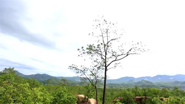 vídeos de stock, filmes e b-roll de hd filtração : grand canyon da tailândia. - ângulo agudo