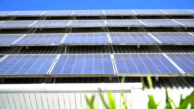 panning: green solar cell