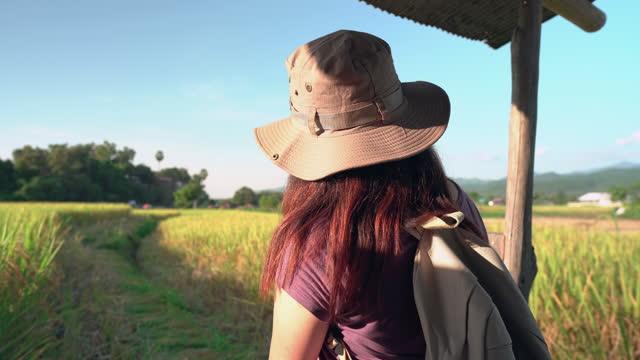 vidéos et rushes de vue panoramique: femme asiatique assise sur le vieux balcon d'une petite cabane sur la crête du rizière, oreille de riz sous le coucher du soleil dans une scène d'agriculture non urbaine et une chaîne de montagnes, le nord de la thaïlande avec une - non urban scene