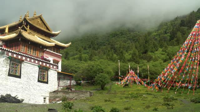 vídeos y material grabado en eventos de stock de panoramización: templo lama en la entrada al valle de changping gou o valle de changping, parque nacional siguniangshan, provincia de sichuan, china - pagoda templo