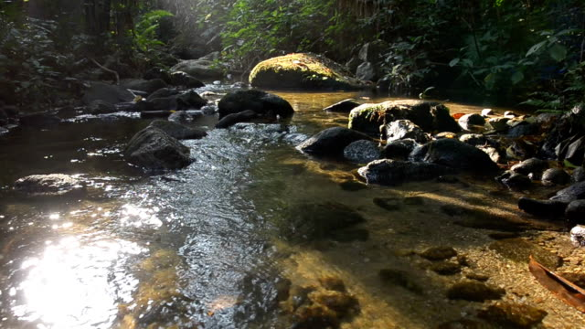 panning: low water level in tiny waterfall in summer