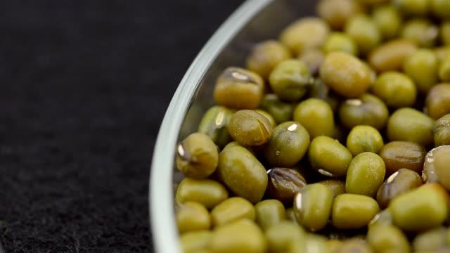 panning: macro green bean - green bean stock videos & royalty-free footage
