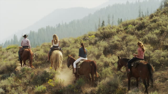 panning medium shot of friends horseback riding / idaho, united states - medium group of animals stock-videos und b-roll-filmmaterial