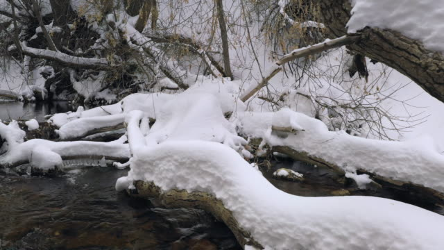 panning over river with snow piled up on fallen logs - american fork city stock videos & royalty-free footage