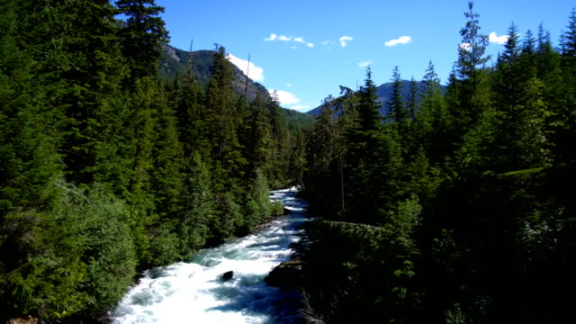 Panning over the Cheakamus River