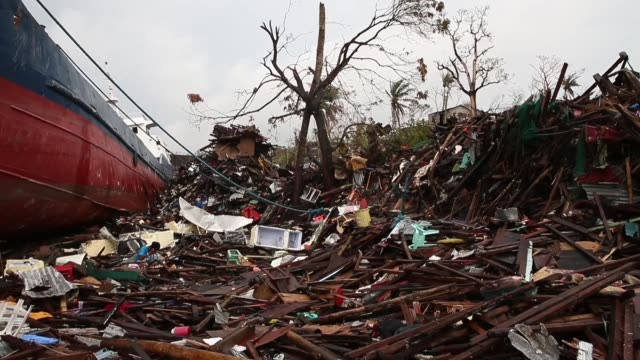 vidéos et rushes de panning shot a freighter ship stranded among debris and rubble typhoon haiyan which ripped through philippines on november 9 has been described as... - démoli
