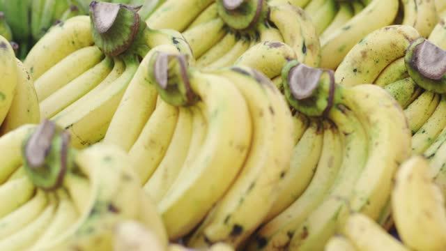 パンニングショット、市場でバナナ。 - 熟した点の映像素材/bロール