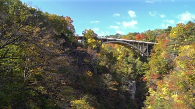 panning shot: bridge at naruko george miyagi osaki japan - ginkgo stock videos & royalty-free footage