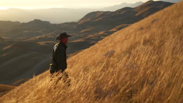 panning shot of a park ranger hiking up a hill through tall grass at sunset - 公園保安官点の映像素材/bロール