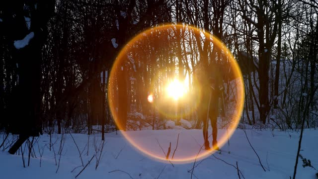 panning shot of a sunset through the woods in mount-royal park on a late winter afternoon - ski holiday stock videos & royalty-free footage