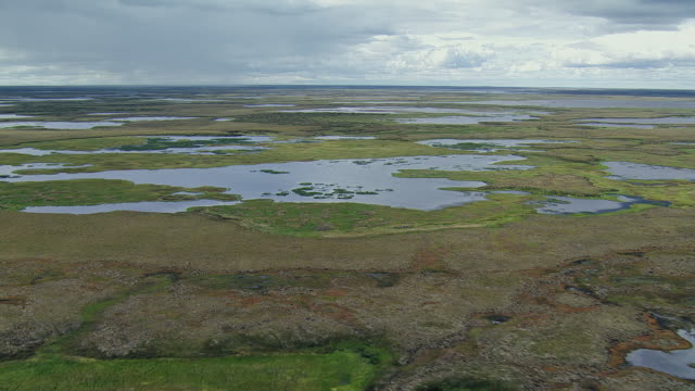 panning shot of alaskan wetlands - wildlife reserve stock videos & royalty-free footage