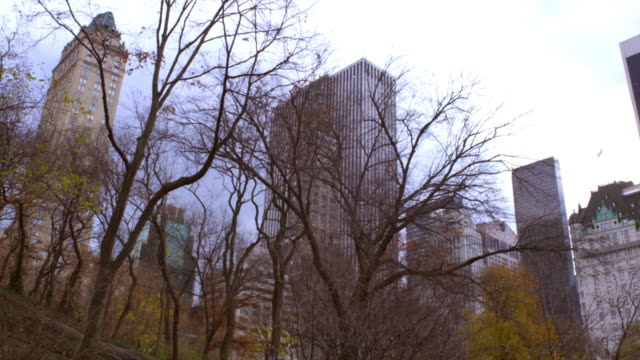 panning shot of buildings behind trees in new york city. - manhattan new york city stock videos & royalty-free footage