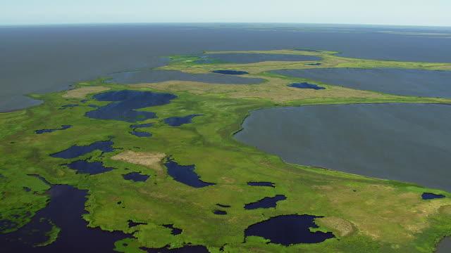 vidéos et rushes de panning shot of coastal wetlands - hémisphère nord