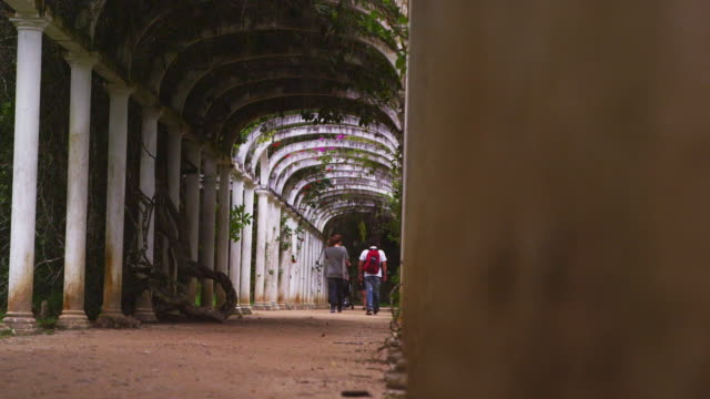 panning shot of couple walking under famous arches in botanical gardens. - 2013 stock videos & royalty-free footage