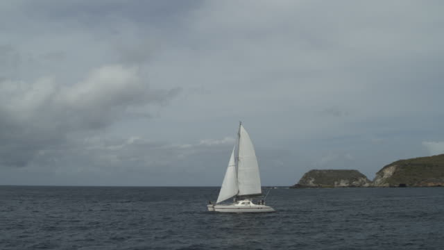 panning shot of distant catamaran in ocean near island / ronde island, grenada - 双胴船点の映像素材/bロール