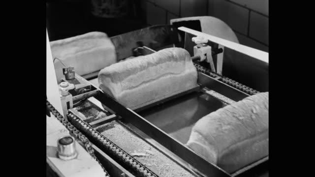 panning shot of loaves of baked bread on conveyor belt in bakery - nahrungsmittelfabrik stock-videos und b-roll-filmmaterial