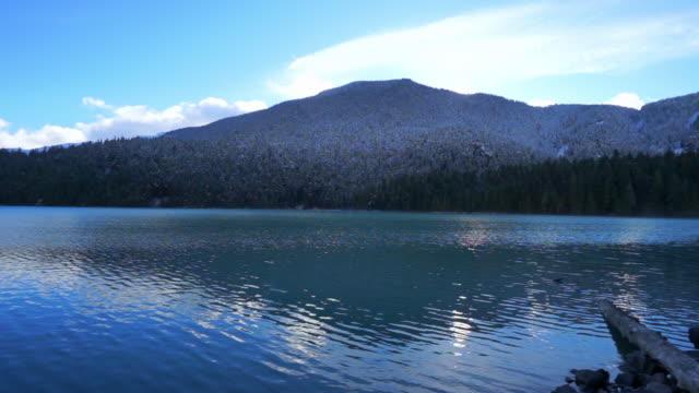 panning shot of log on rocks by rippled lake near forest against sky during winter - cheakamus lake, british columbia - garibaldi park stock videos & royalty-free footage