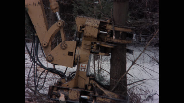 panning shot of mechanical claws lifting tree from snow covered forest, vermont, usa - forestry industry stock videos & royalty-free footage