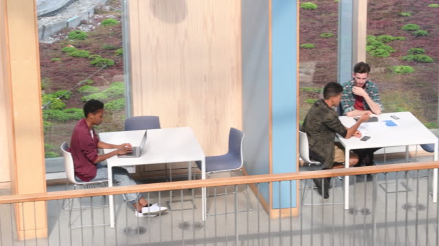Panning shot of students working in cubicles with books and laptops