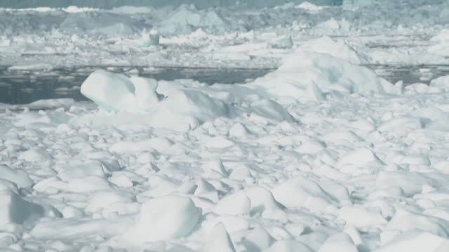 panning shot of the coast of greenland - cold temperature stock videos & royalty-free footage