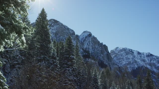 panning shot of the forests and snowy mountain peaks of the san juan mountains (rocky mountains) outside ouray, colorado under a clear, blue sky on a bright winter's day - snowcapped mountain stock videos & royalty-free footage