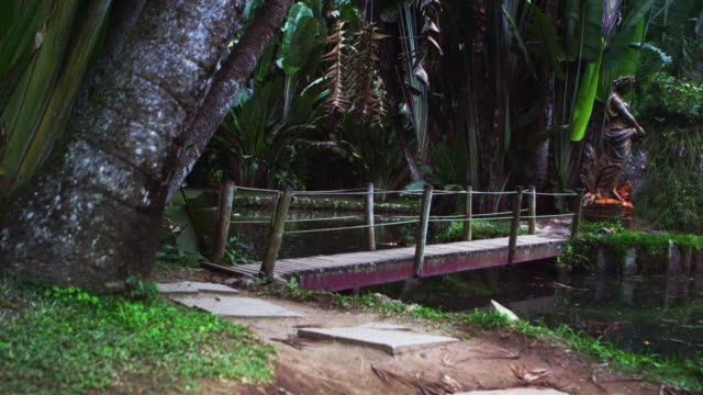 vídeos y material grabado en eventos de stock de panning shot of trail and wooden bridge in rio. - 2013