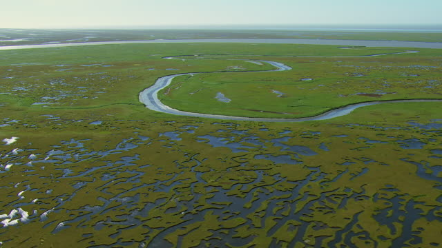 vidéos et rushes de panning shot of wetlands in alaska - hémisphère nord