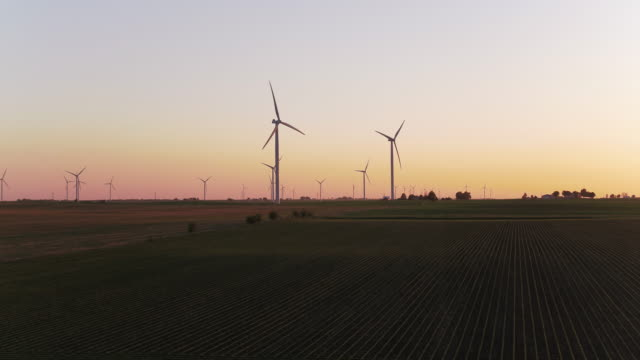 Panning shot of wind farm at sunrise