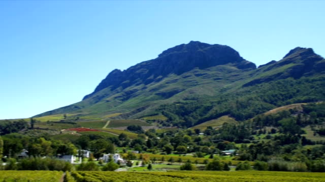 panning shot of wine estate and vineyards /  franschhoek/ western cape/ south africa - franschhoek stock videos and b-roll footage