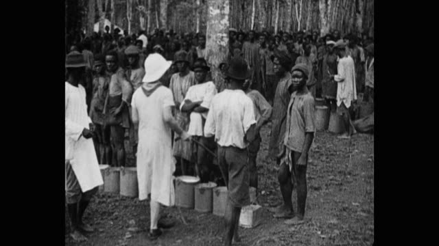 panning shot of woman checking latex in containers with manual workers standing behind in forest - tropical tree stock videos & royalty-free footage