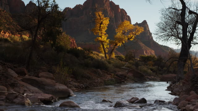 Panning sot of mountain and stream in Zion National Park / Zion National Park, Utah, United States,