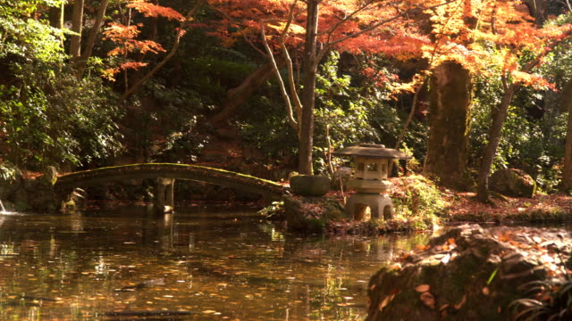 panning: stone bridge in public japanese garden - oriental garden stock videos and b-roll footage