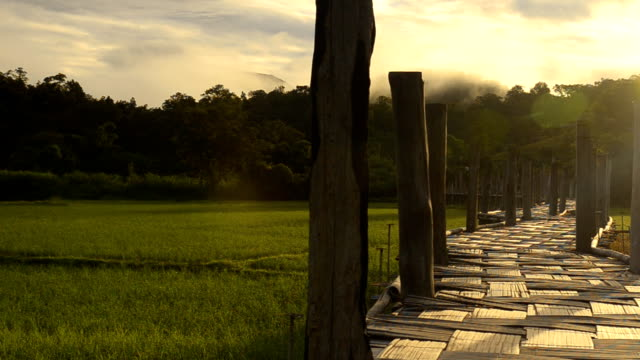 panning: su tong pae bridge under the first sun light - mae hong son province stock videos and b-roll footage