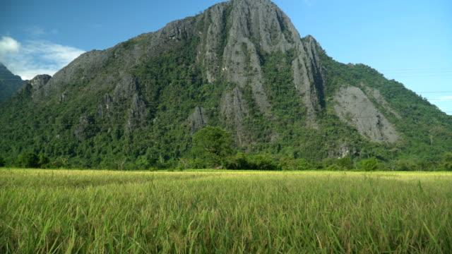 panning: the progress pass through rice field among mountain range