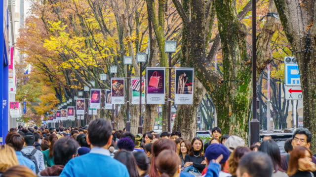 panning time lapse :crowds walk through a omote sando road. omote-sando is considered one of most important shopping areas in tokyo, the largest city in the world. - satoyama scenery stock videos & royalty-free footage
