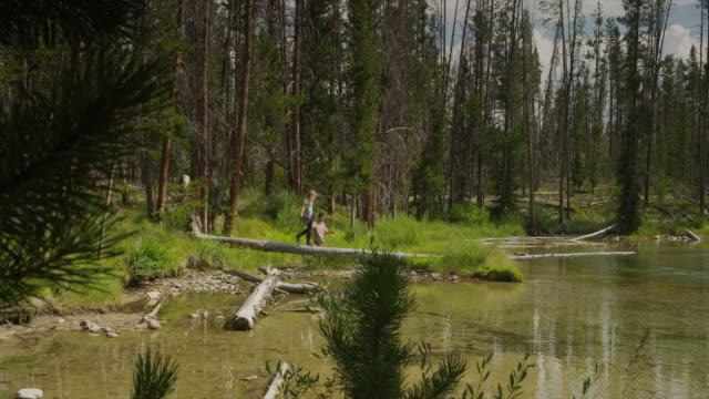 panning wide shot of young couple walking on log at lake / redfish lake, idaho, united states - full length stock-videos und b-roll-filmmaterial