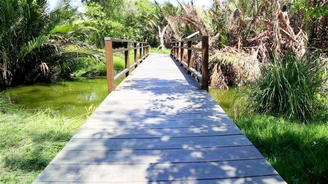 vidéos et rushes de hd panoramique : pont en bois allée dans le parc. - traverser